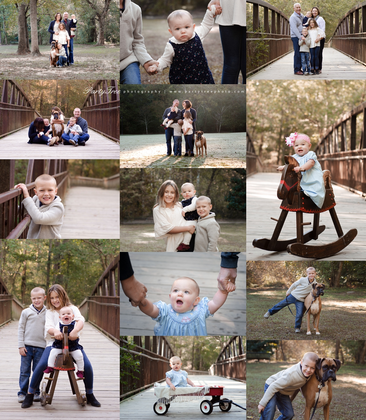 Marietta Family Photographer Johns Creek Family Photographer East Cobb Park Party Tree Photography